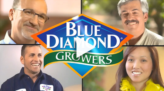 Meet members of the Blue Diamond team video
