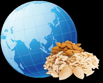 Almonds around the globe